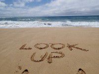 Happy Look Up Day - Have you had a Look Up Moment?