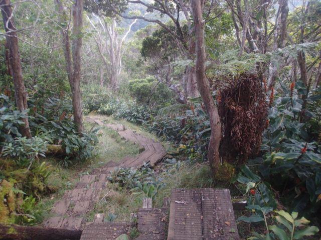 Alikai_Stairs_Kauai_Heidi_Siefkas