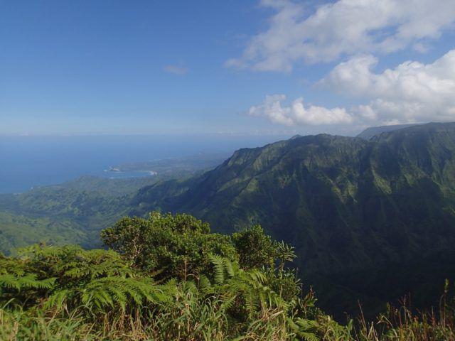 Kilohana_Overlook_Alikai_Kauai_Heidi_Siefkas