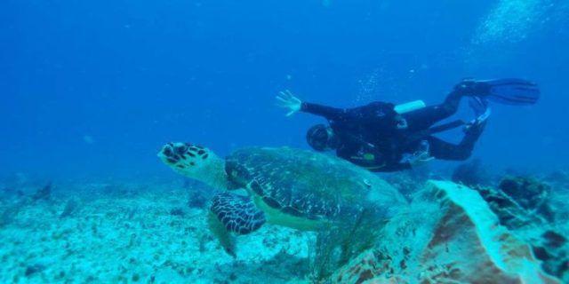 Diving_Corn_Island_Nicaragua
