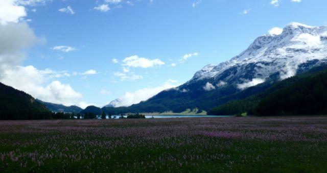 Alpine Summer Adventure in Switzerland