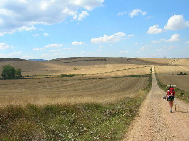Camino_de_Santiago_image