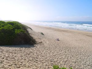 Top 5-things-to-do-in-South-Africa-Garden-Route, Sedgefield beach