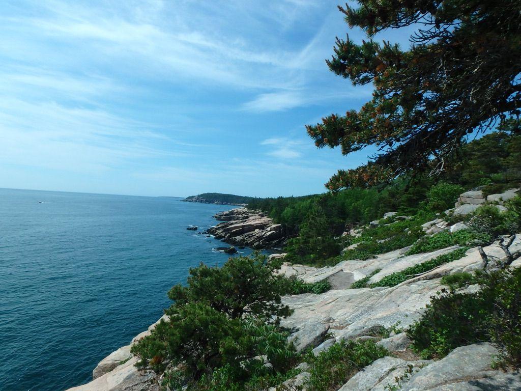 Sunny_Ocean_Path_Acadia_National_Park_Maine