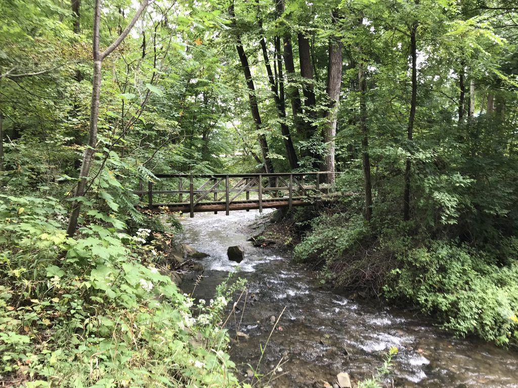 Finger_Lakes_Trail_Bridge