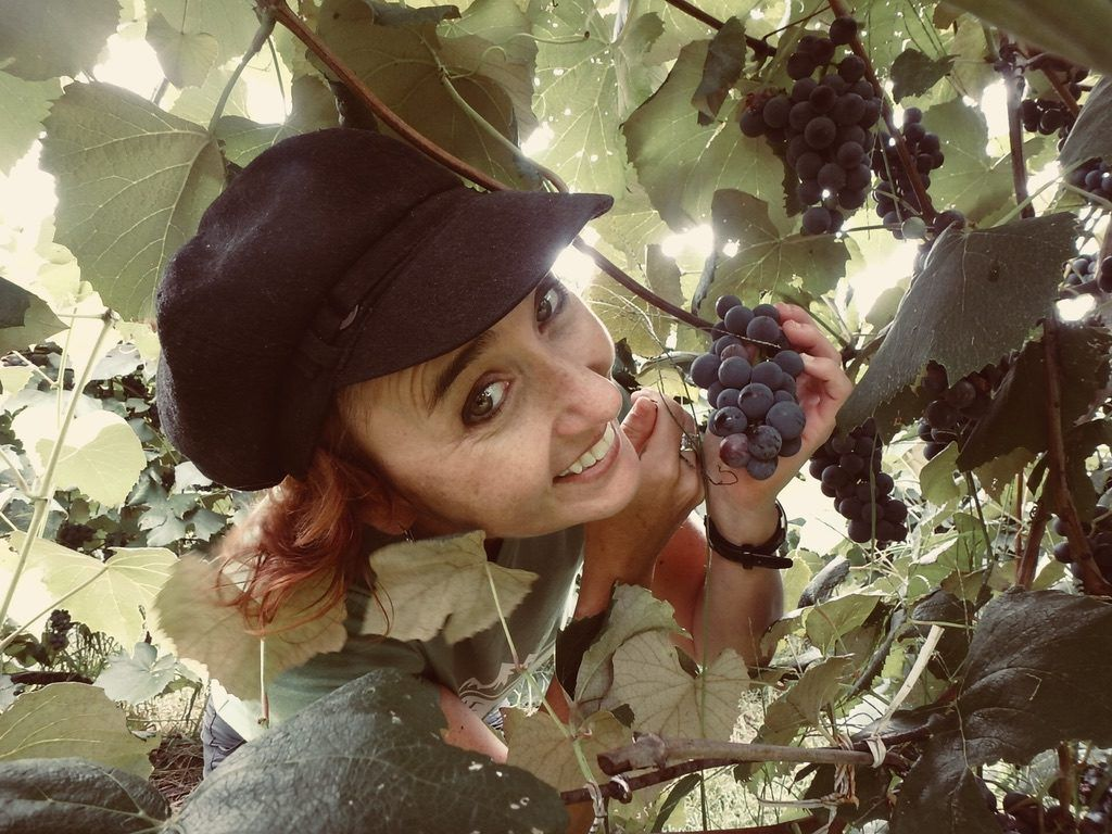 Heidi_Siefkas_Vineyard_Grapes_Finger_Lakes_New_York