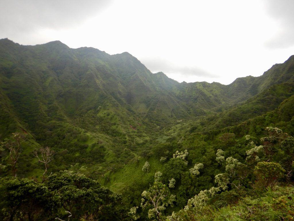 Moana_lua-hike_oahu_hawaii