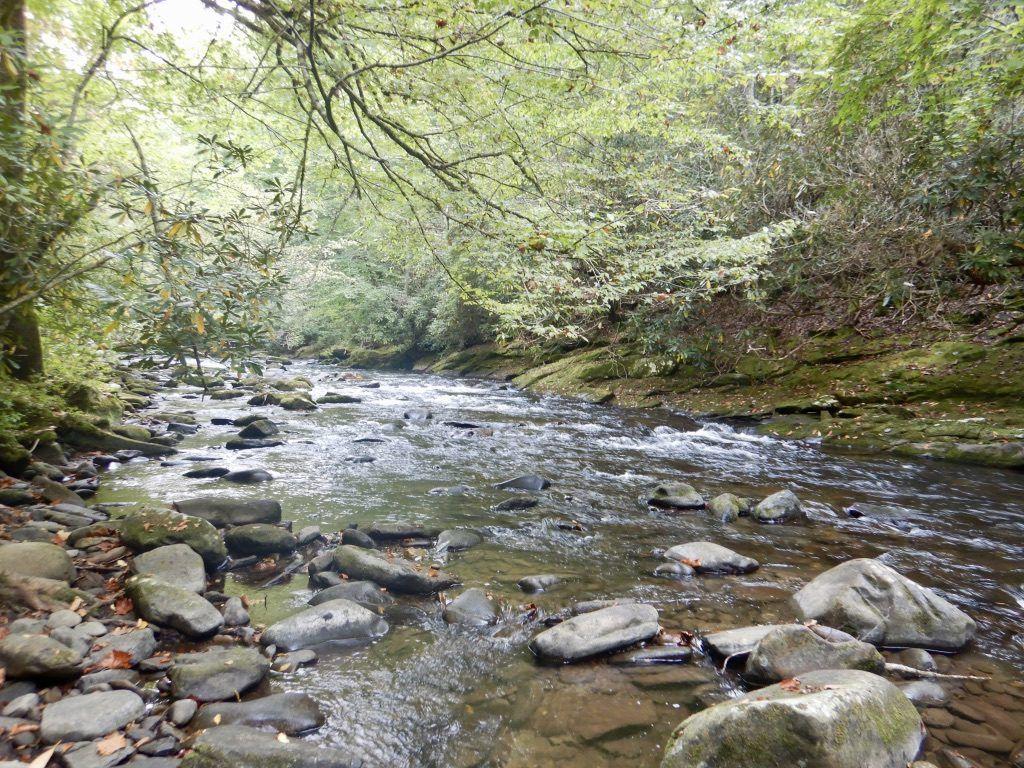 Deep_Creek_Hike_North_Carolina_Heidi_Siefkas